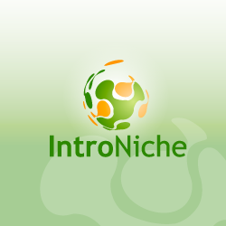 Logo Design IntroNiche