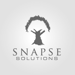 Logo Design Snapse Solutions
