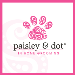 logo design paisley & dot