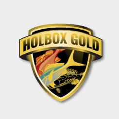 logo design Holbox Gold