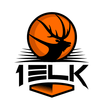 logo design request looking for a logo for a travel basketball team